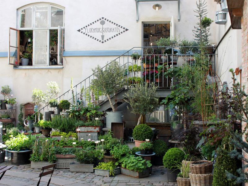 Gothenburg-floramorochkrukatoer