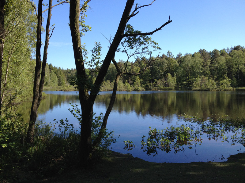 Gothenburg-lake