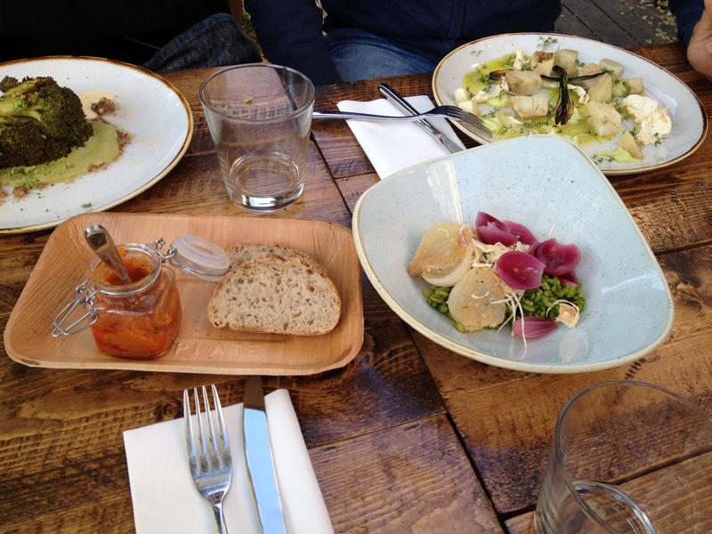 Gothenburg-veggie-dinner