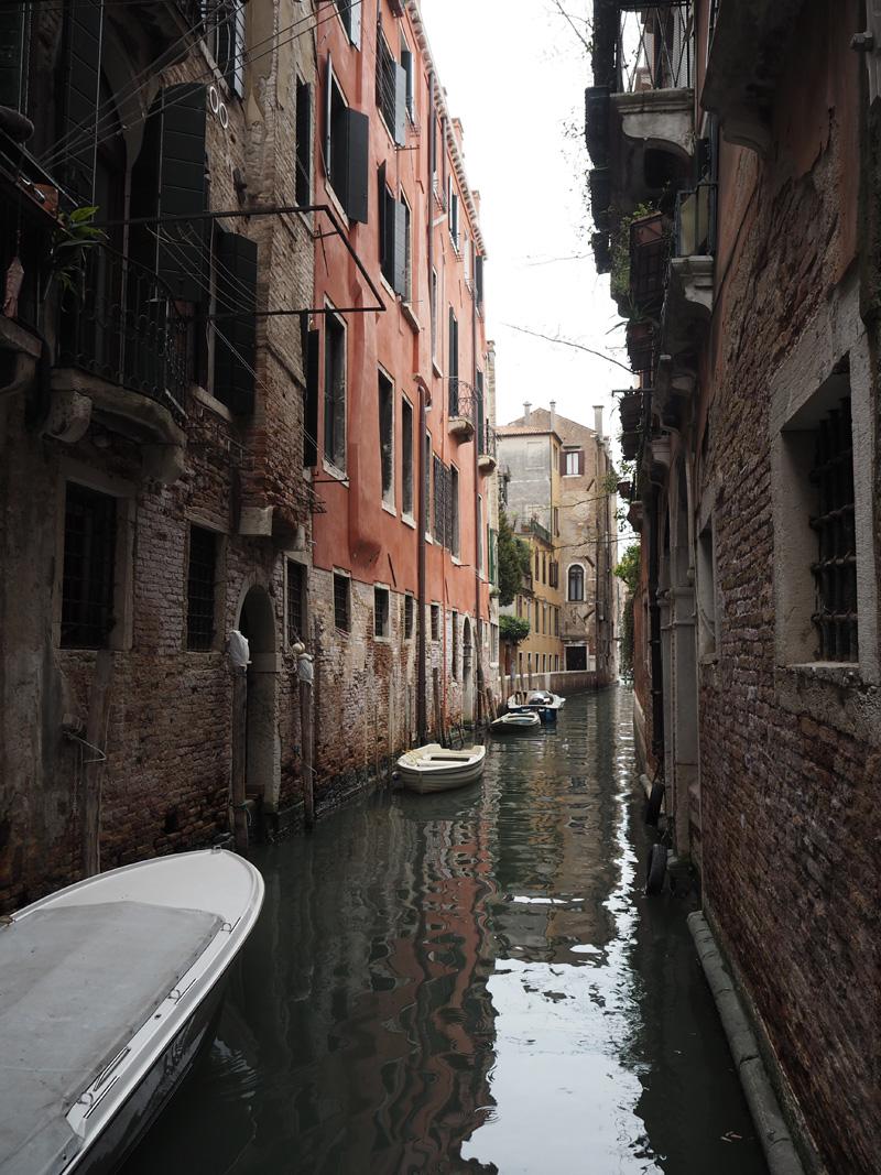 RosyCheeks-Venice-3