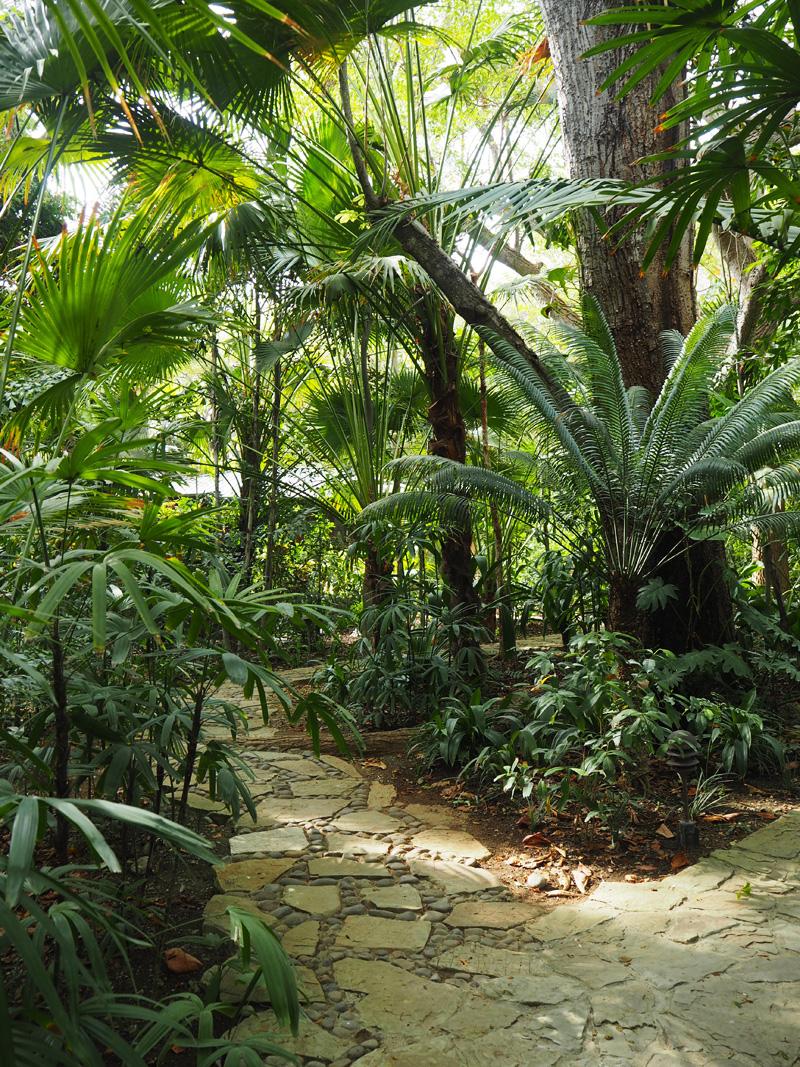 RosyCheeks-Blog-Costa-Rica-Latitude-10-garden-3