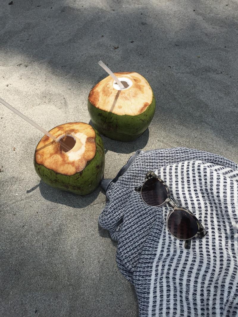 RosyCheeks-Blog-Costa-Rica-Manuel-Antonio-coconuts