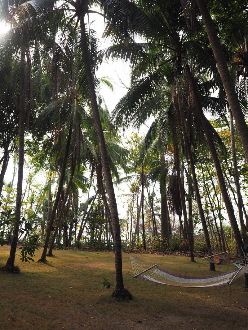 RosyCheeks-Blog-Costa-Rica-Montezuma-Hotel-YlangYlang-garden