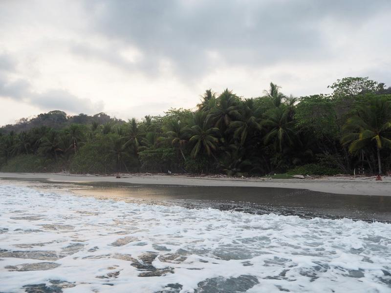 RosyCheeks-Blog-Costa-Rica-Montezuma-nature-reserve-2