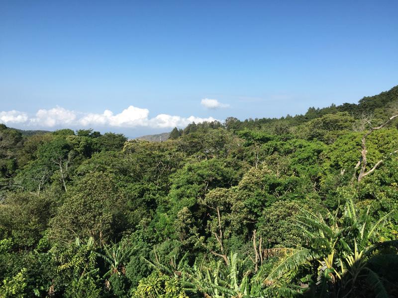 Rosycheeks-blog-Costa-Rica-Monteverde-Hotel-Belmar-1