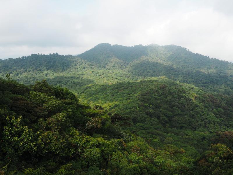 Rosycheeks-blog-Costa-Rica-Monteverde