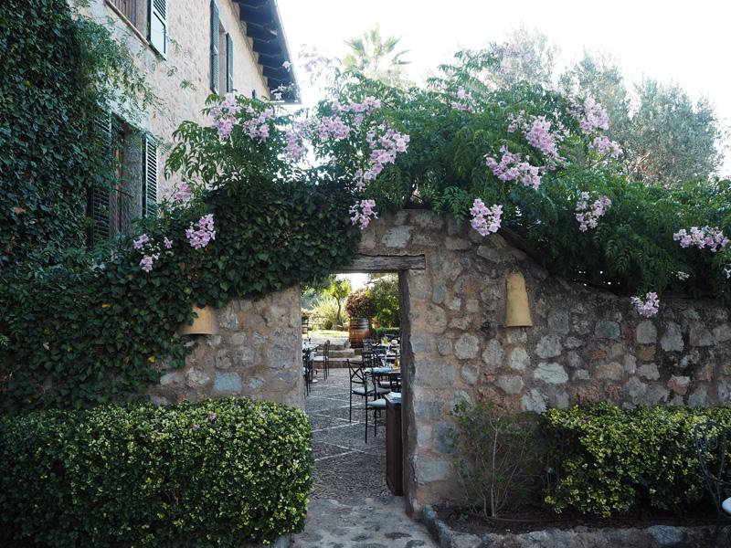 rosycheeks-mallorca-cas-xorc-terrace