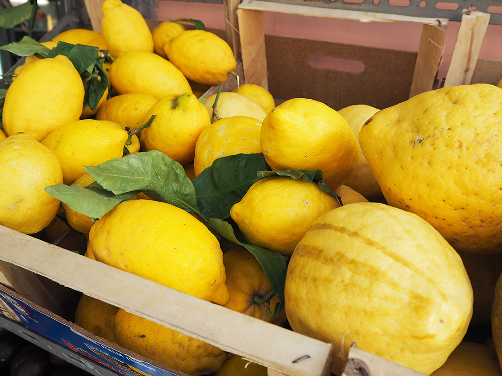 RosyCheeks-Amalfi-Coast-lemons