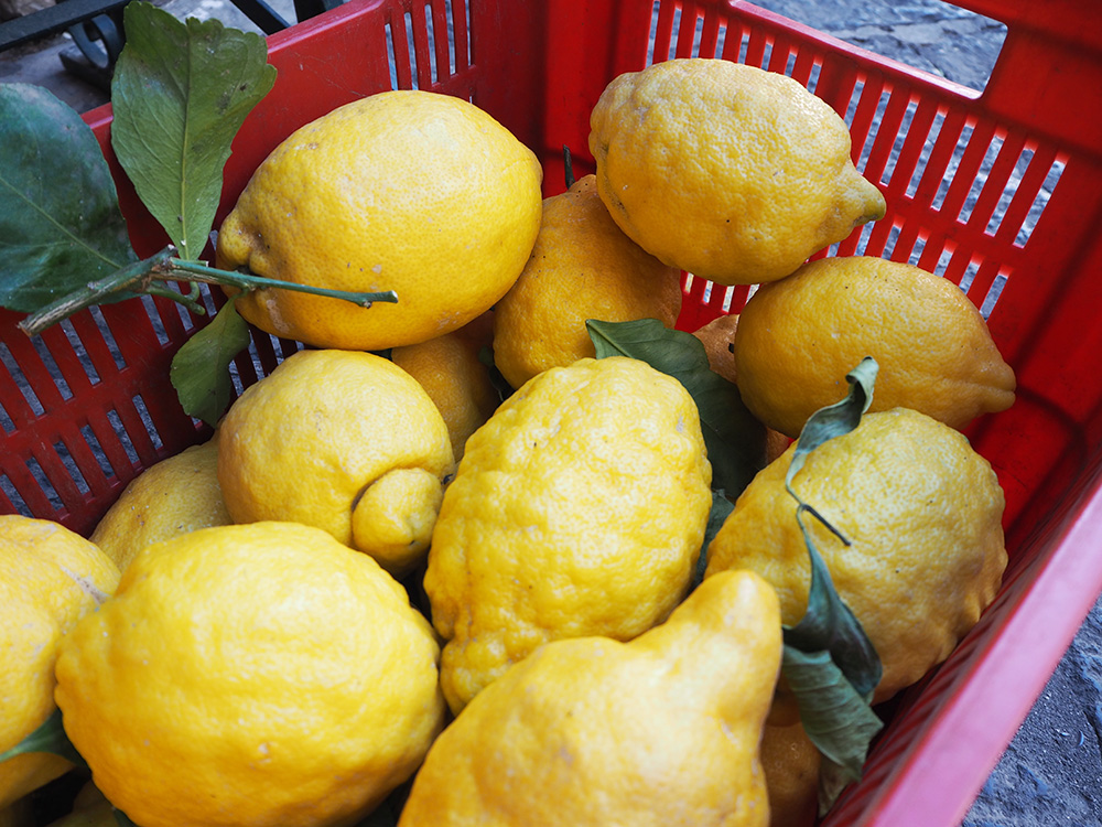 RosyCheeks-Amalfi-lemons
