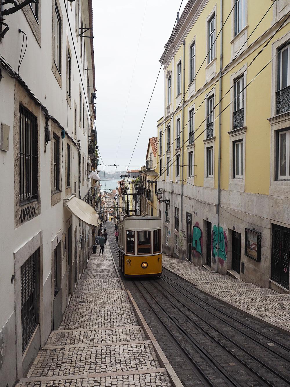 RosyCheeks-lisbon-tram
