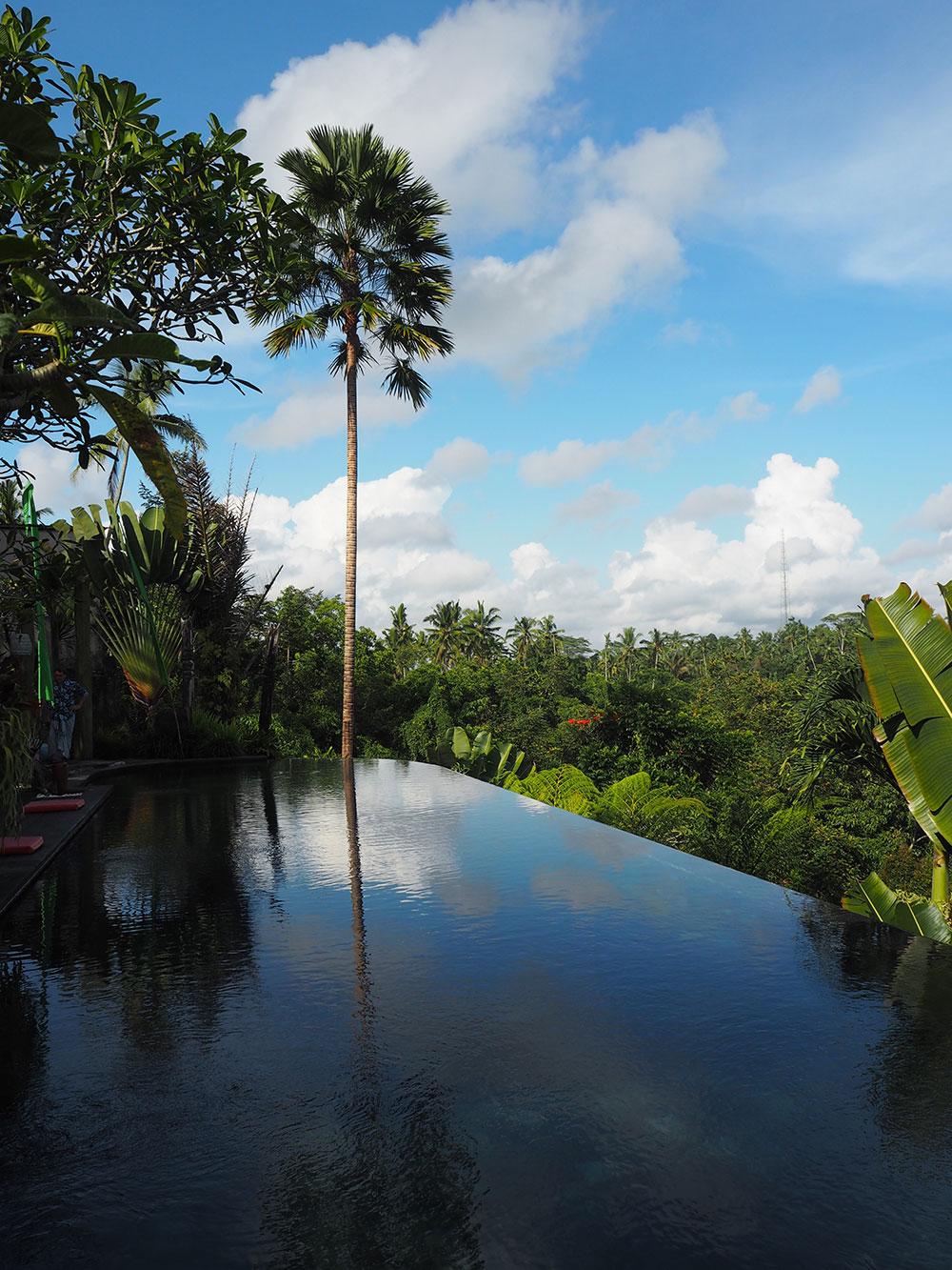 RosyCheeks-Bali-Alam-Ubud-pool