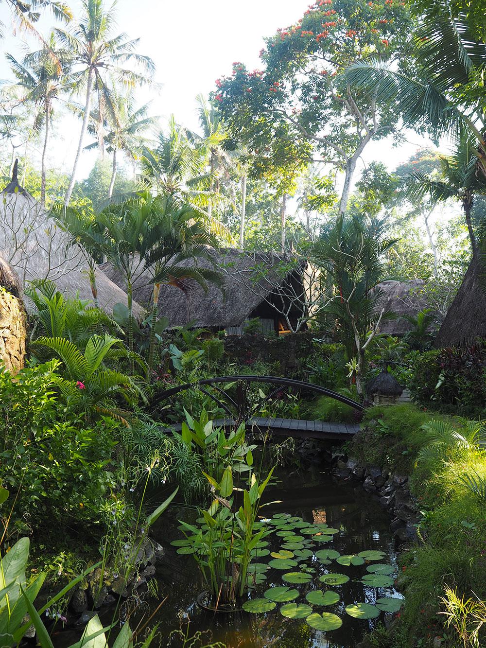 RosyCheeks-Bali-Fivelements-Garden-River