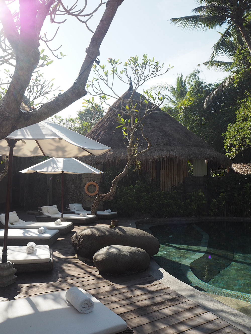 RosyCheeks-Bali-Fivelements-Pool-3