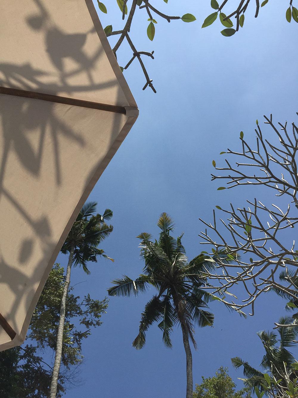 RosyCheeks-Bali-Fivelements-sky