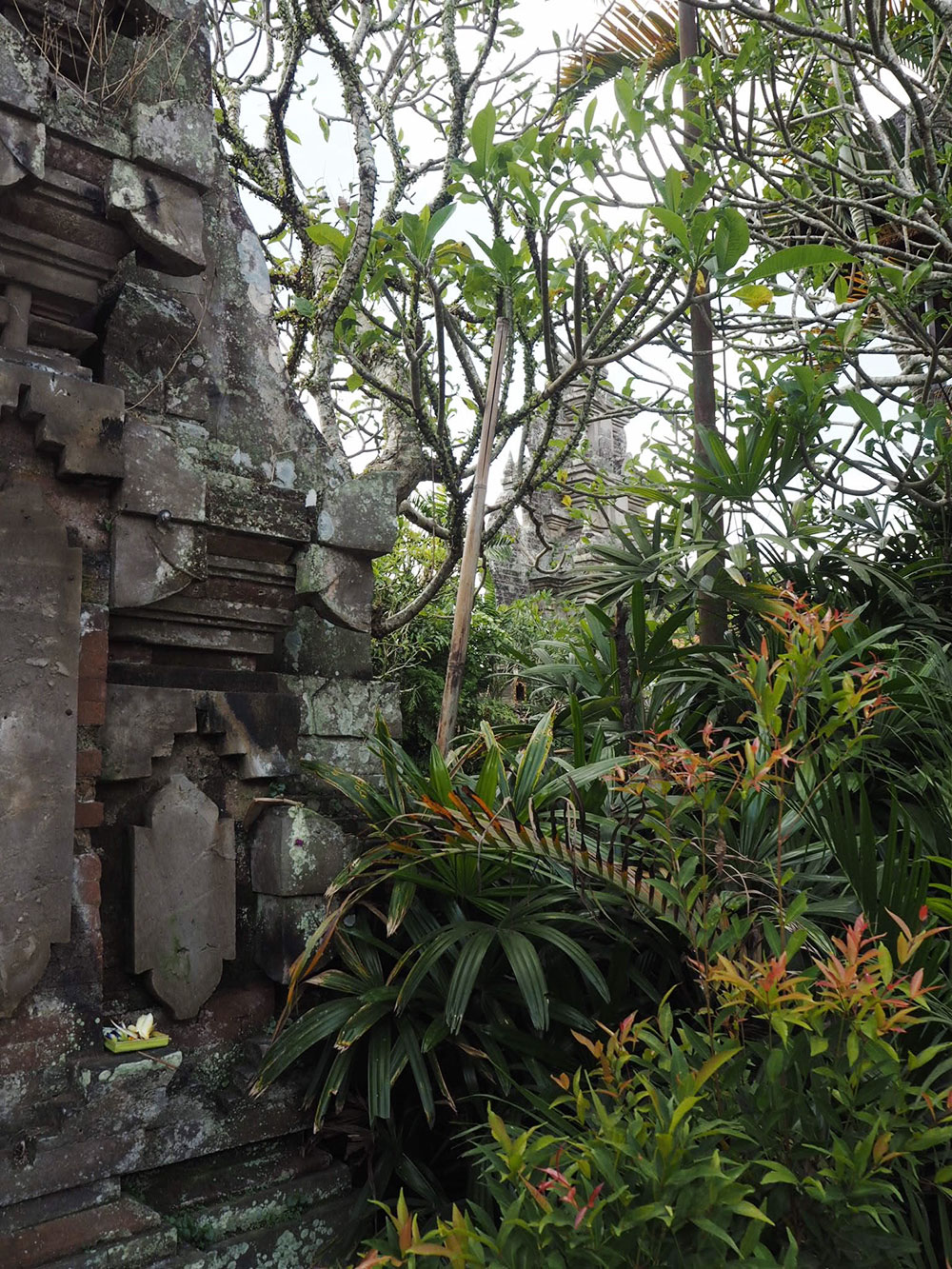 RosyCheeks-Bali-Ubud-Temple-Djungle