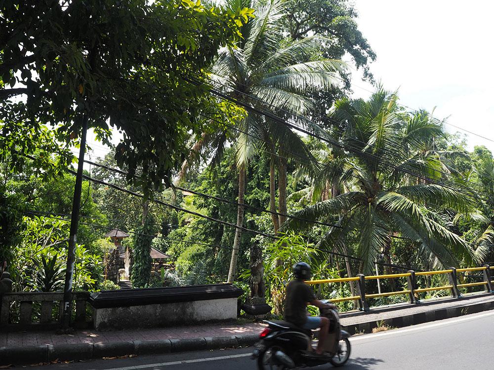RosyCheeks-Bali-Ubud-street