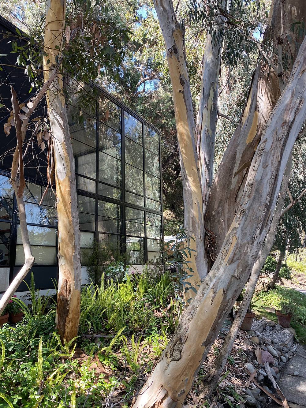 RosyCheeks-Blog-Eames-House-4