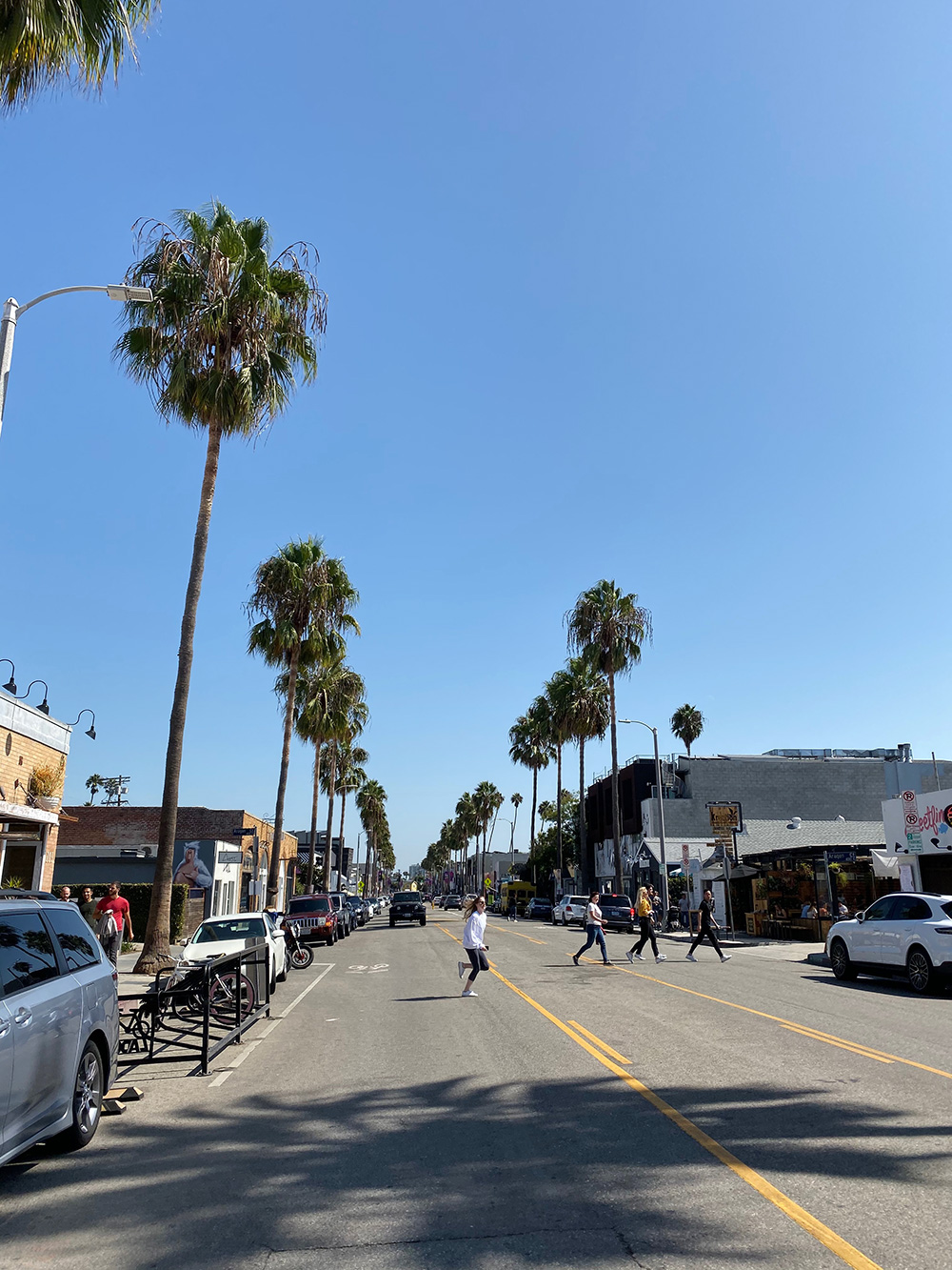 RosyCheeks-Blog-Los-Angeles-Abbot-Kinney-Blvd