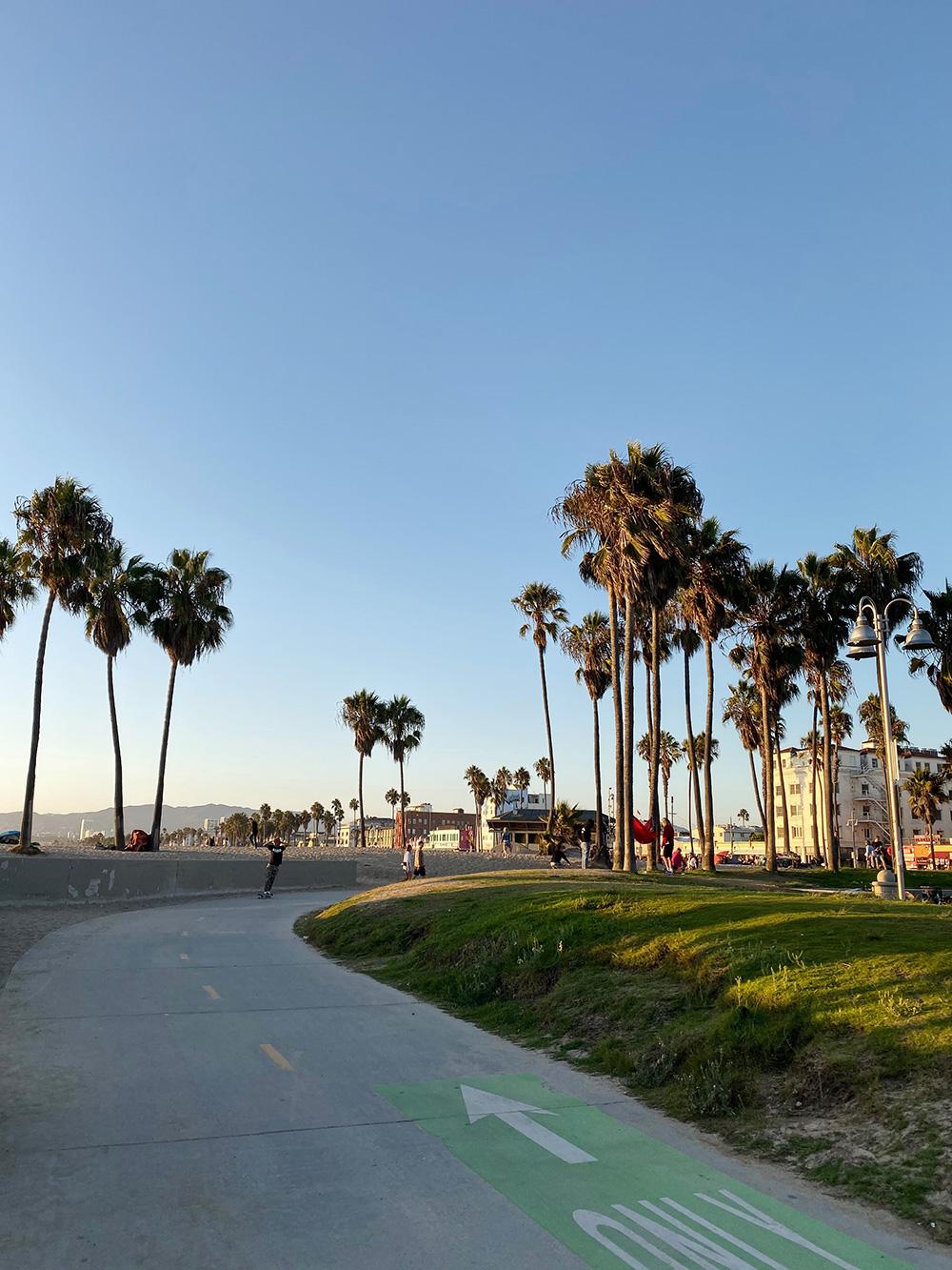 RosyCheeks-Blog-Venice-Beach
