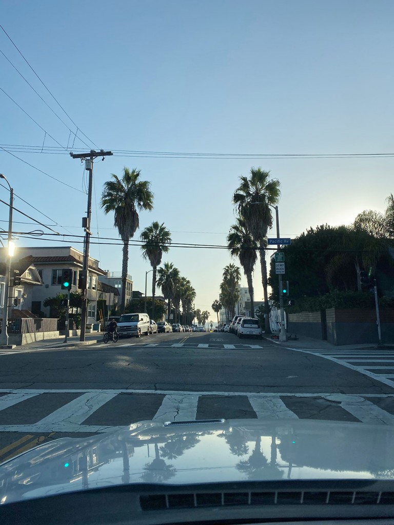 RosyCheeks-Blog-Venice-Car-Drive