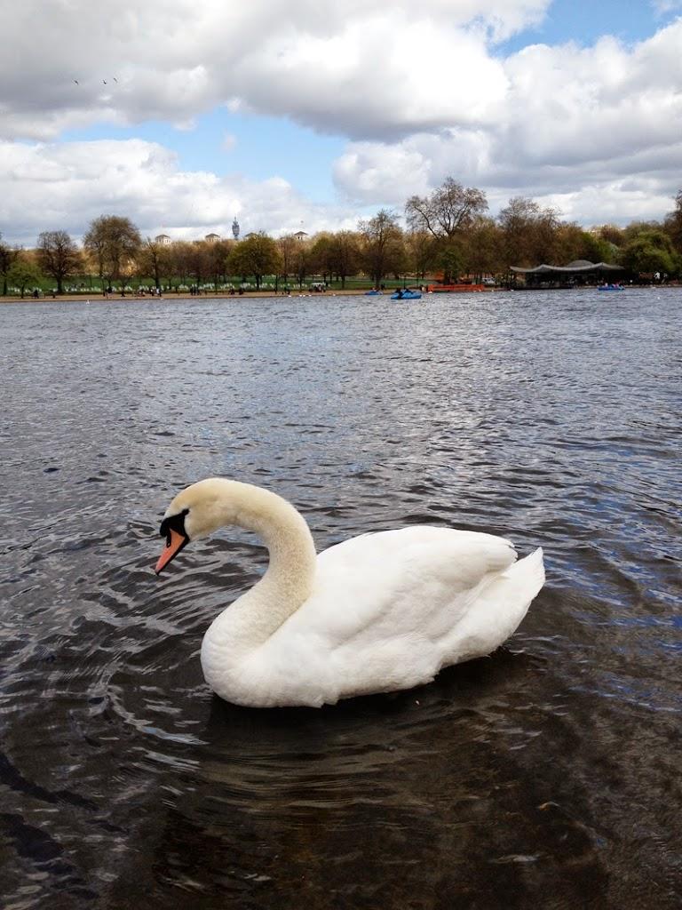 London_Hyde_Park_1