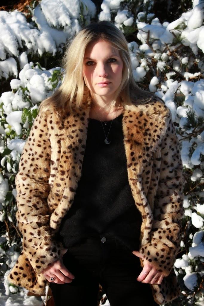 Snow-Leopard-6
